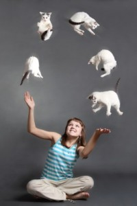 …tho learning to juggle cats might not be a bad life skill..